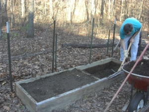 our 2x8 container garden