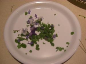 saladherbs