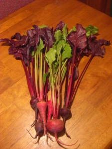 6-10beets