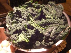 kale, Tuscan kale
